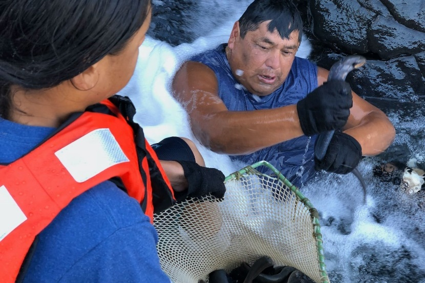 Meet the Columbia River's Most Ancient Elder: Lamprey
