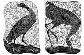 Linocuts by Gorge Artist Sally Gilchrist