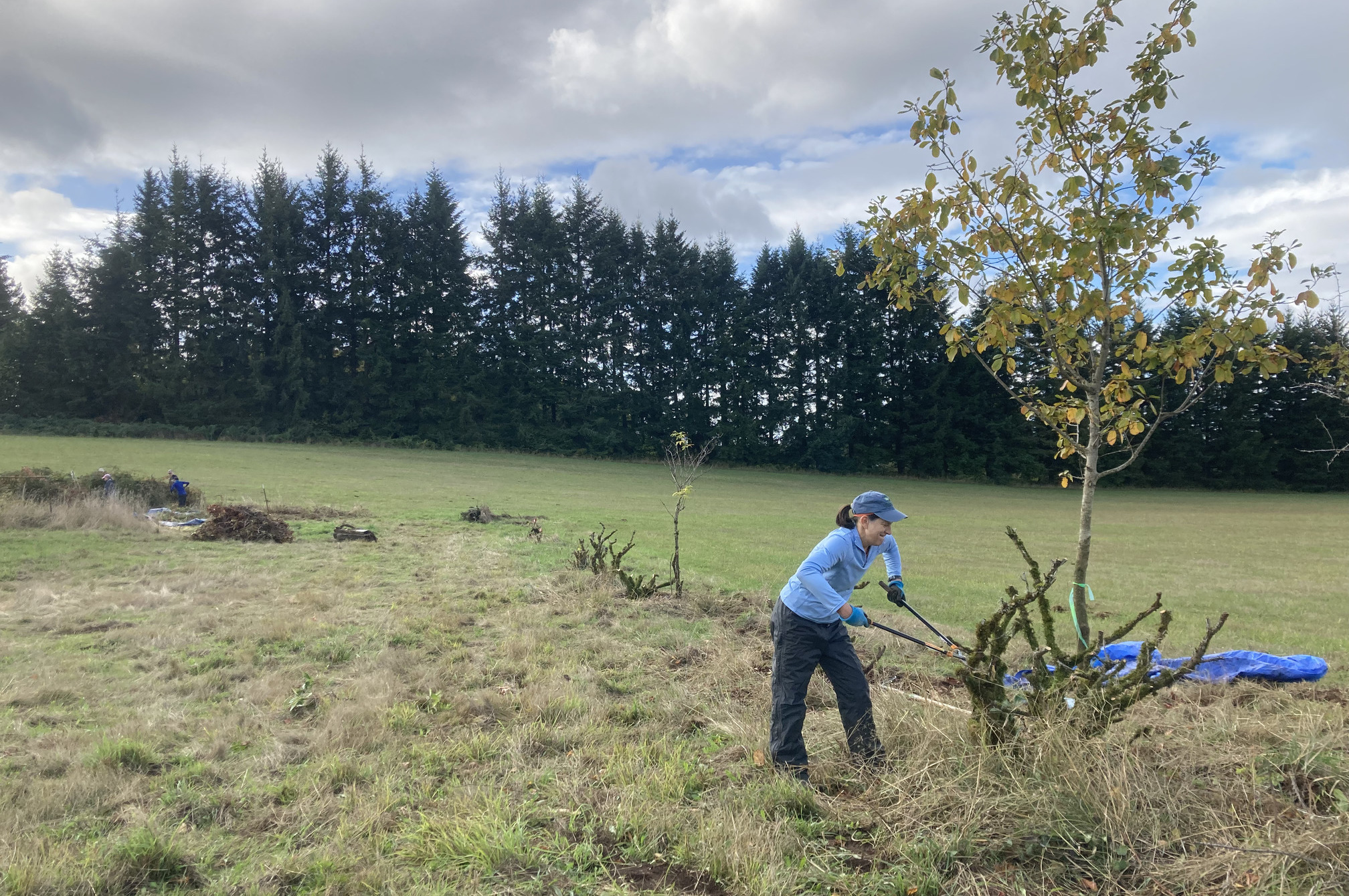 Sign Up for a Stewardship Work Party