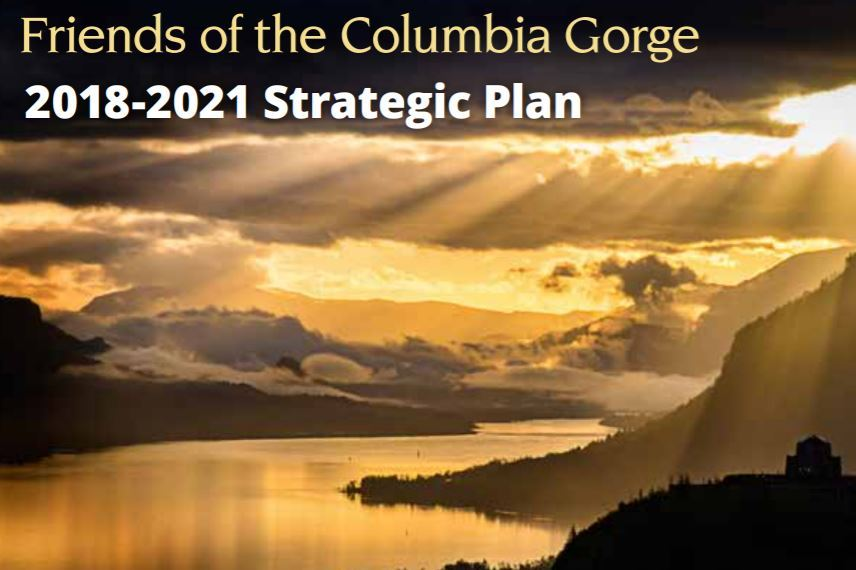 Friends' 2018-21 Strategic Plan
