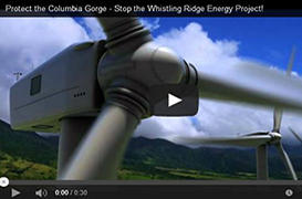 Watch Video About the Whistling Ridge Energy Project