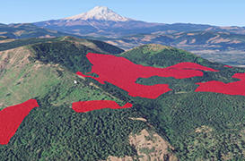Tell Weyerhaeuser to Stop Clearcutting the Gorge