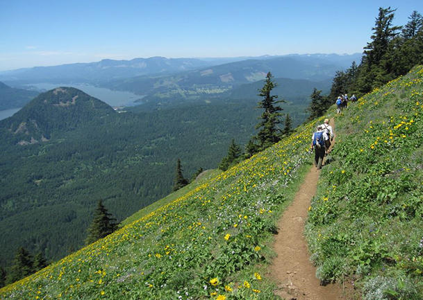 GO MIDWEEK: Dog Mountain Loop Trail