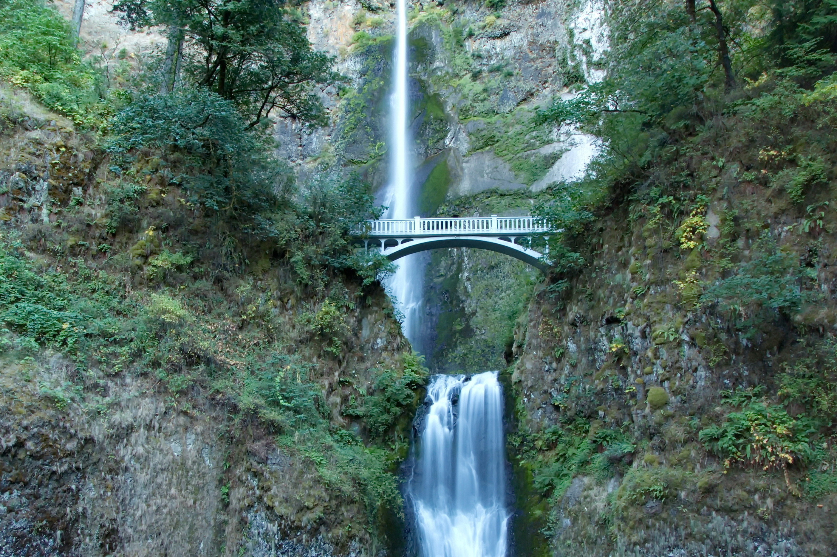 Multnomah Falls to Larch Mountain, OR