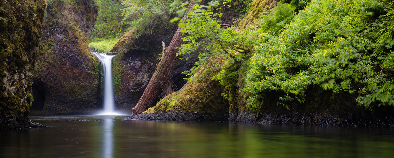 Eagle Creek To Punchbowl Falls Friends Of The Columbia Gorge - Oregon waterfalls map