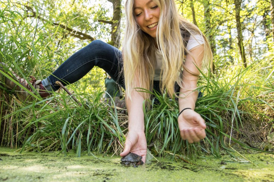 A Life-Changing Experience: Releasing the Western Pond Turtle
