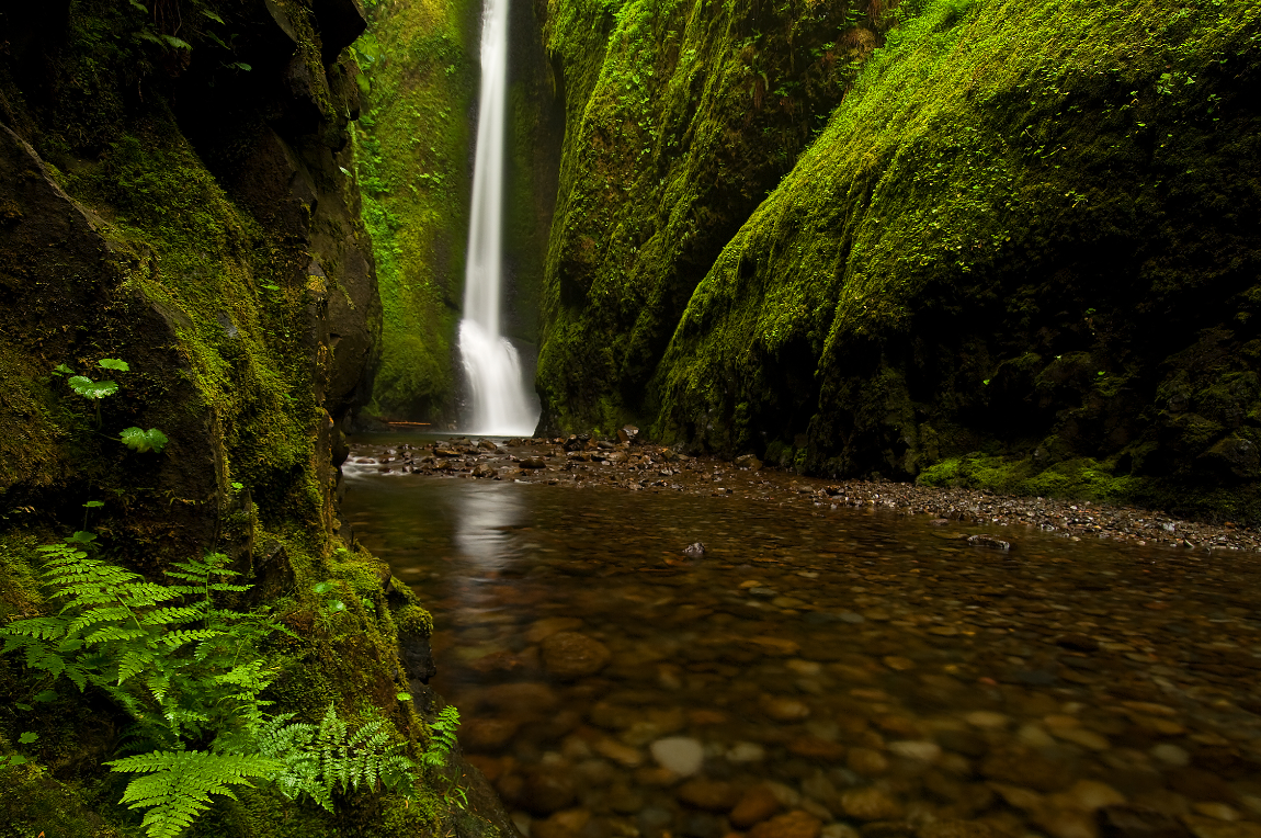 Friends of the Columbia Gorge Launches Spring Gorge Haiku Challenge