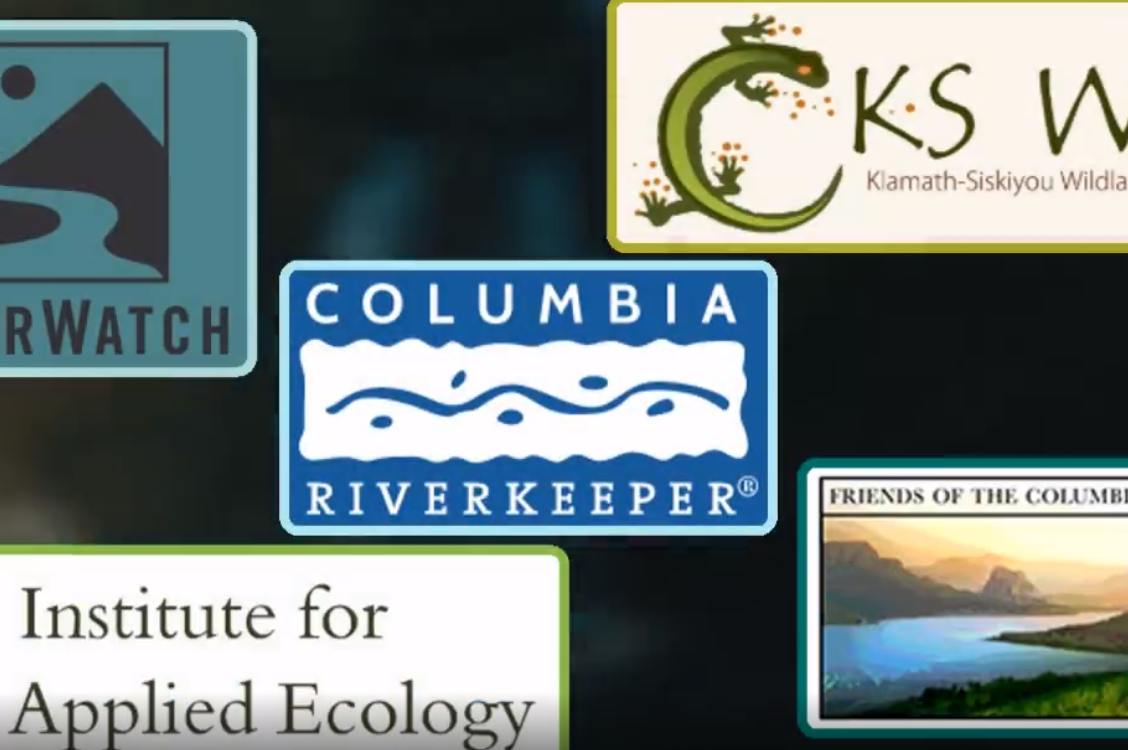 EZVid: 5 Vigilant Groups Defending Wildlife And Natural Resources In Oregon (VIDEOS)