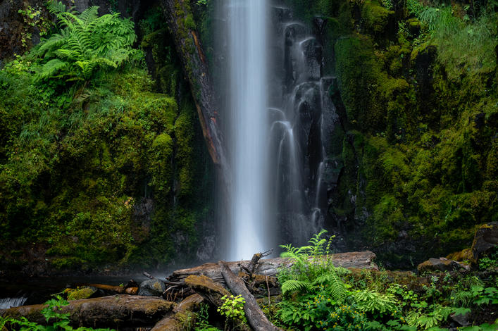 Dry Creek Falls Shot Wins Grand Prize in Friends' Sixth Annual Photo Contest