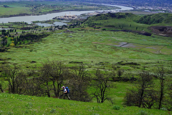 Friends of the Columbia Gorge Land Trust Earns National Recognition