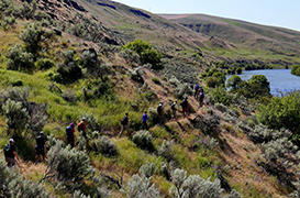 Deschutes River Trail to Ferry Springs, OR