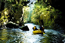 White Salmon River Rafting - Full Day