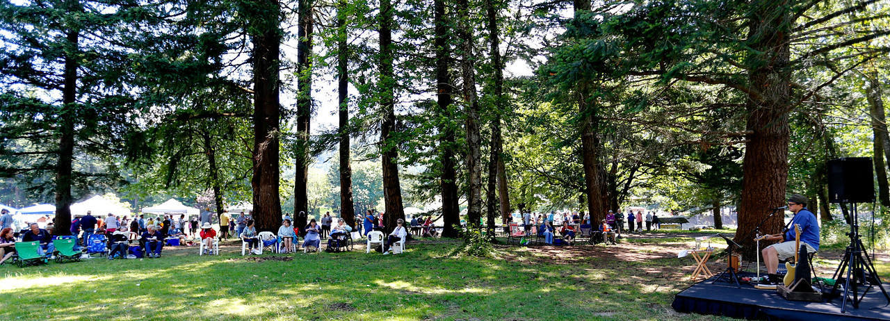 37th Annual Picnic in Paradise