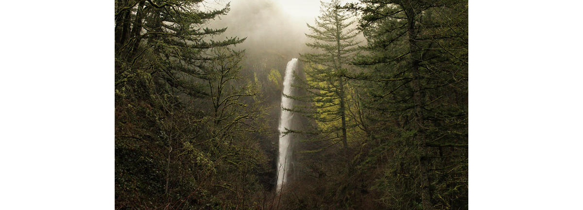 Fall Foliage at Latourell Falls, OR
