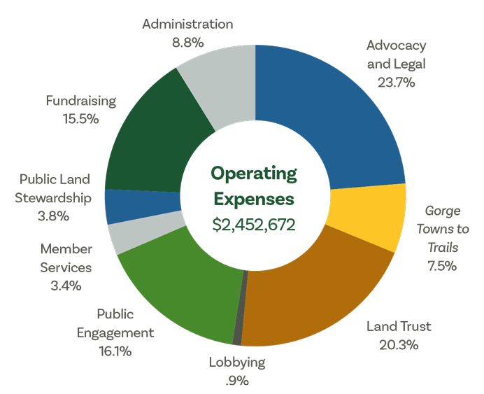Expenses graphic