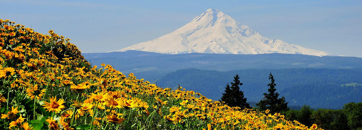 Columbia River Gorge National Scenic Area Case Law
