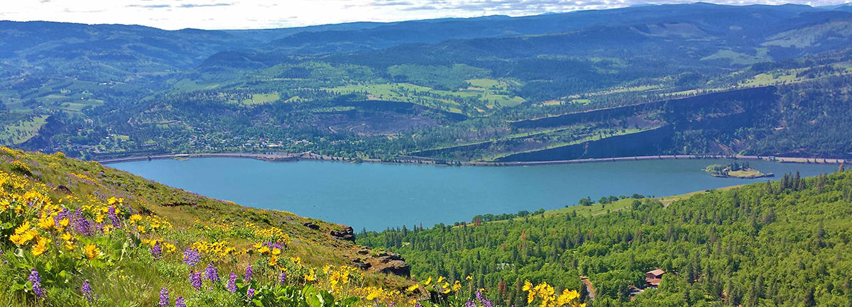 Friends of the Columbia Gorge's Current Legal Docket