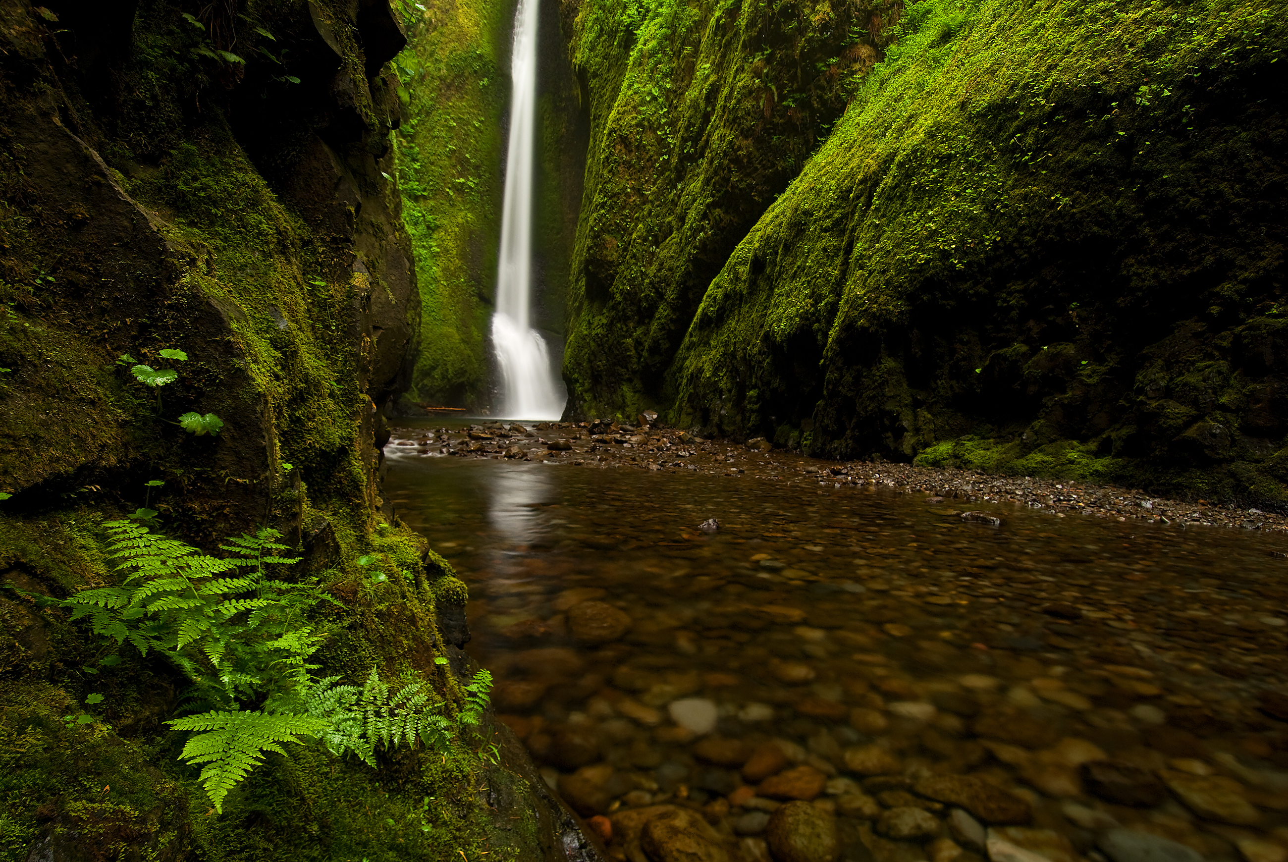 Oneonta Gorge to Lower Oneonta Falls