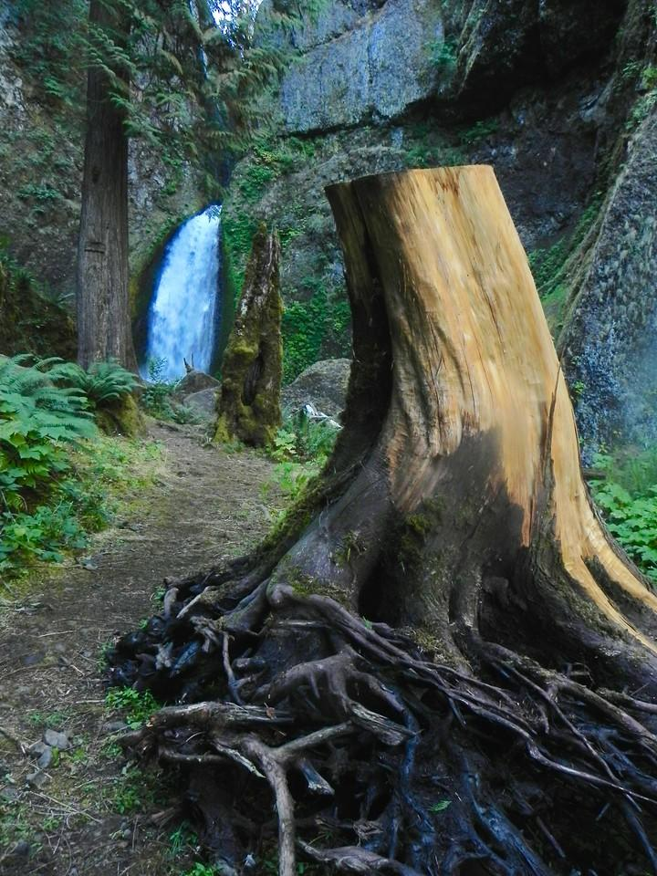 Time will heal, Wahclella Falls: Becky Rittel