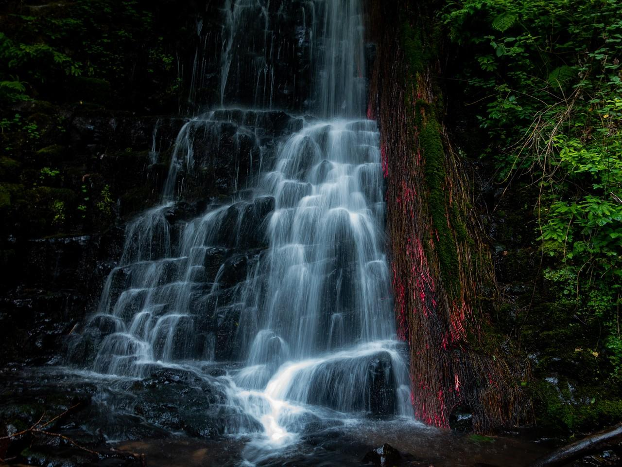 Coopey Creek, Color and light in the waterfall: Dennis Reichelt